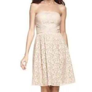 NWT Vince Camuto Beige Lace Strapless Dress